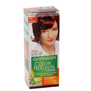 Garnier Burgundy Hair Color 4.6