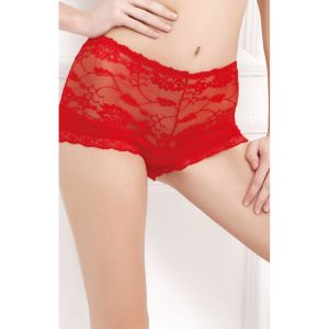 Belleza Net & Full Coverage Panty - 8035