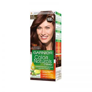 Garnier Cinnamon Chocolate Hair Color 5.25