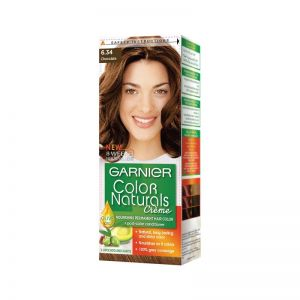 Garnier Chocolate Hair Color 6.34
