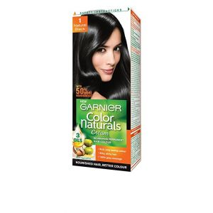 Garnier Black Hair Color 1