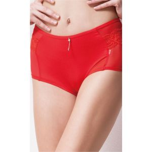 Belleza Net & Full Coverage Panty - 2061